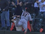 Diving Catch into Stands