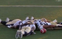 CFL Team Celebrates By Planking